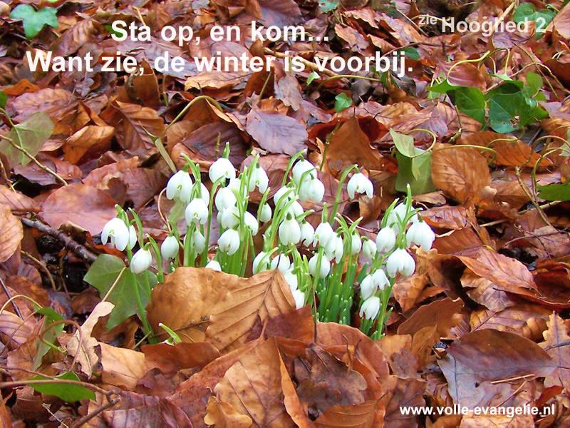 ...de winter is voorbij...