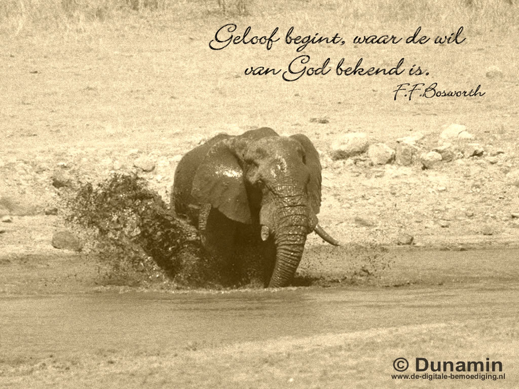Geloof begint...