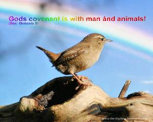 Gods Covenant: to man ánd animal!
