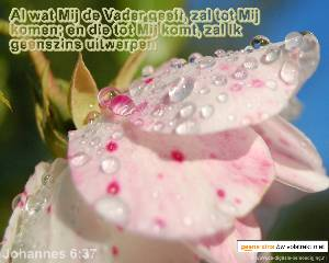 Jezus zei: -Wie tot Mij komt-