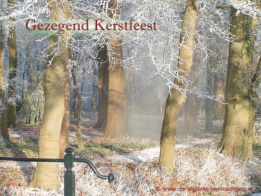 Gezegende Kerstdagen Ecard winters bos sneeuw