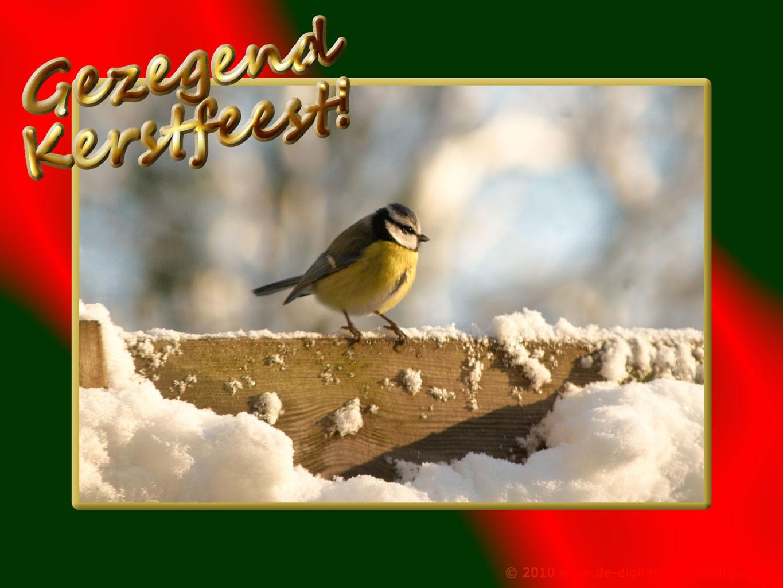 Inspiratie Ecards Wallpapers Gratis De Mooiste Kerst En